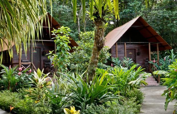 фото Evergreen lodge изображение №70