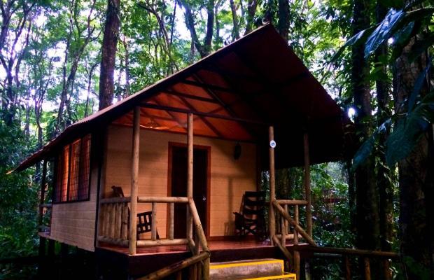 фото отеля Evergreen lodge изображение №53