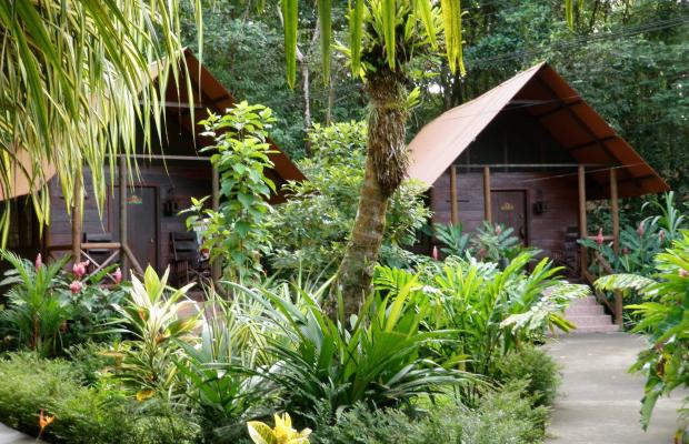 фото Evergreen lodge изображение №42