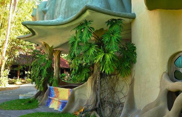 фотографии отеля Laguna Lodge изображение №51