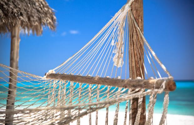 фотографии отеля The Manta Resort изображение №3