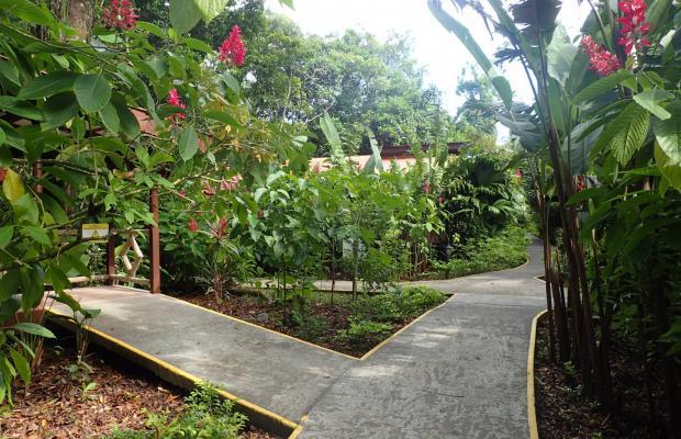 фотографии отеля Pachira Lodge изображение №19