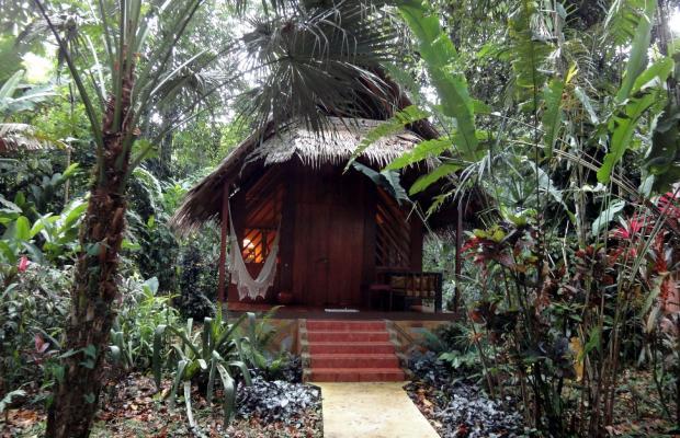 фотографии отеля Shawandha Lodge изображение №23