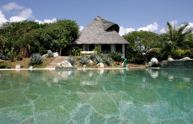 фотографии отеля Msambweni Beach House изображение №23