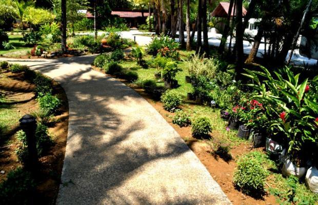 фотографии отеля La Foresta Nature Resort изображение №3