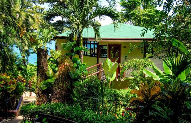 фото отеля Tulemar Bungalows & Villas изображение №93