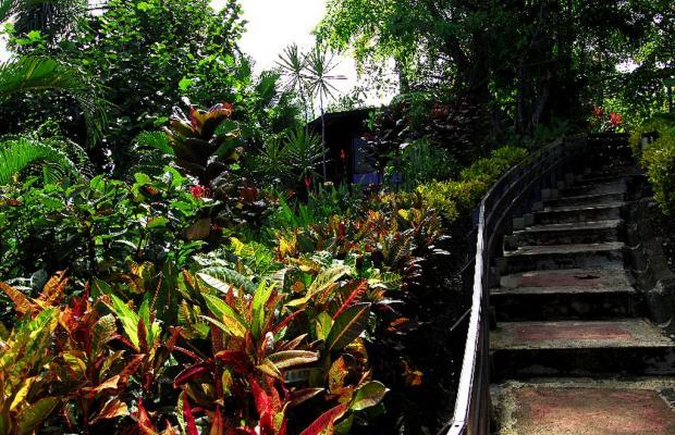 фотографии отеля Tulemar Bungalows & Villas изображение №35
