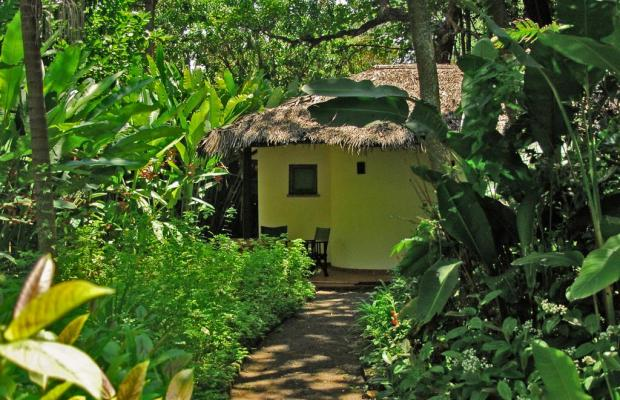 фотографии отеля Moivaro Coffee Lodge изображение №7