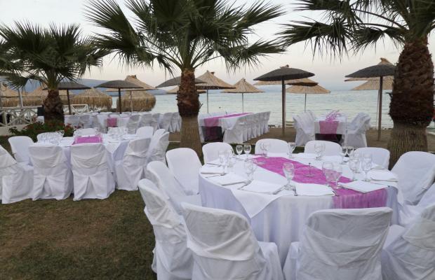 фотографии отеля Grand Bleu Beach Resort изображение №3