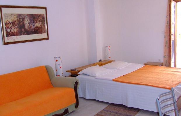 фото отеля Niksa Radenovic изображение №13