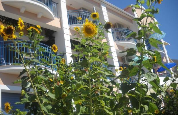 фото Olive Bay изображение №18