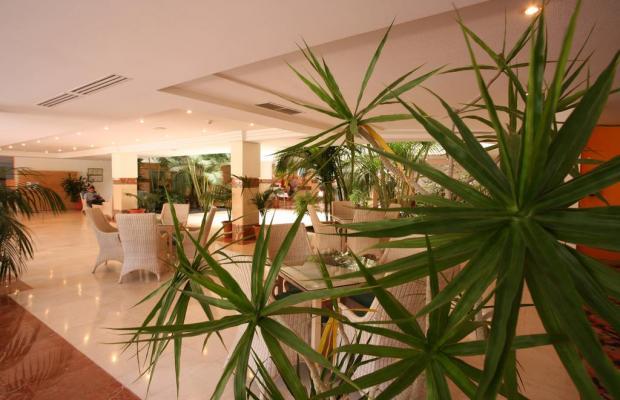 фотографии IFA Altamarena Hotel (ех. lti Hotel Altamarena) изображение №28