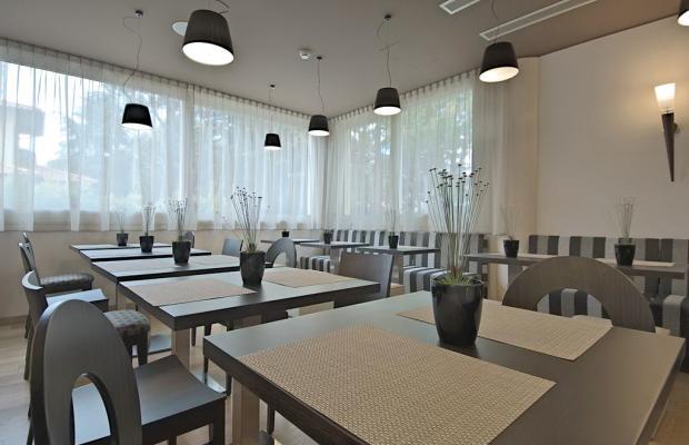 фото отеля Zen Hotel Versilia (ex. Hotel Gli Oleandri) изображение №5