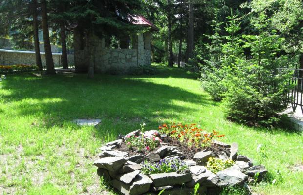 фото отеля Старые друзья (Staryie druzya) изображение №5