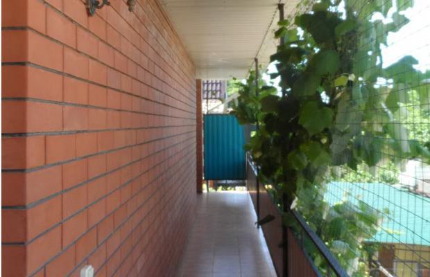 фотографии отеля Эллада (Ellada) изображение №11