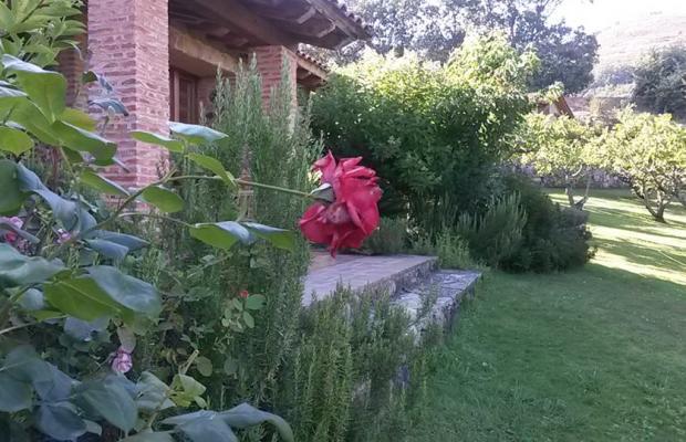 фото Casa Rural El Higueral De La Sayuela (ех. La Sayuela B&B) изображение №58