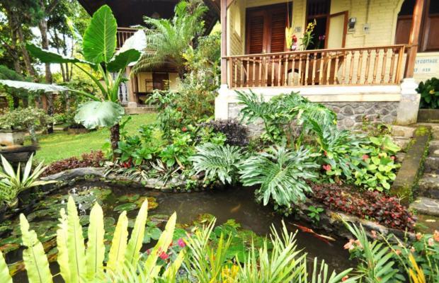 фотографии Puri Lumbung Cottages изображение №12