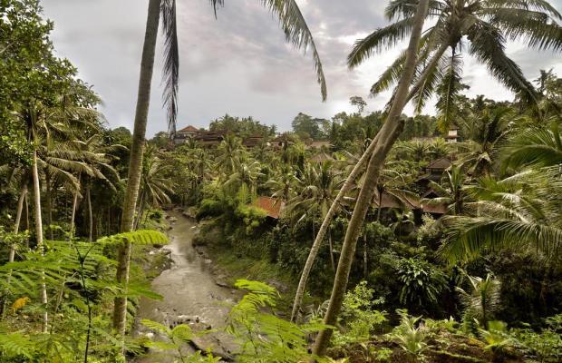 фотографии отеля Bali Spirit Spa изображение №35