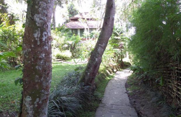 фотографии Sayan Terrace Resort изображение №12