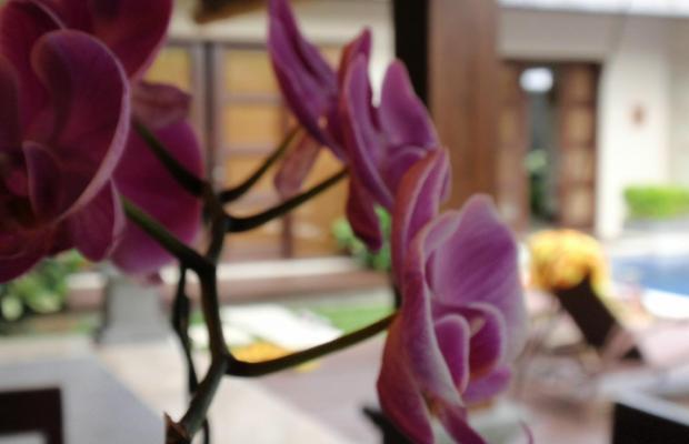 фото Bali Baik Seminyak Villa & Residence изображение №2
