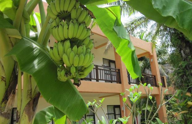 фотографии отеля Khaolak Palm Hill Resort изображение №11