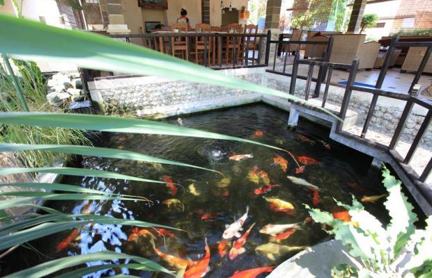 фотографии Bali Sukun Cottage изображение №32