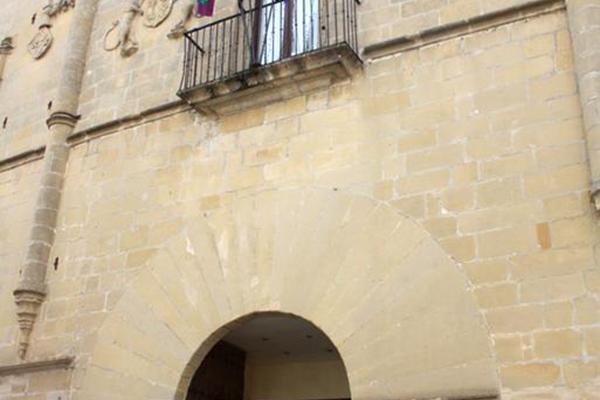 фото Palacio de los Salcedo изображение №10