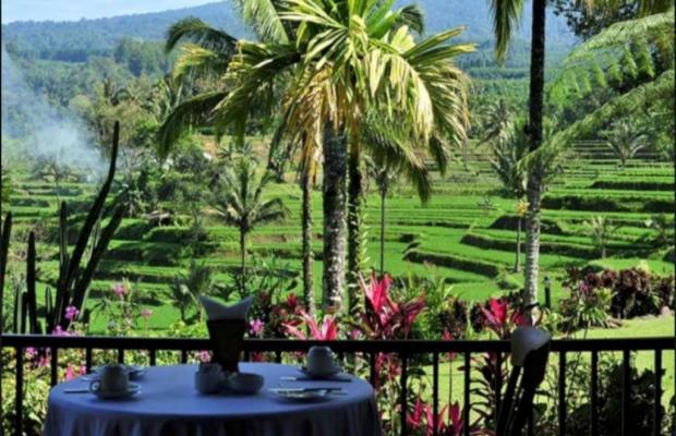 фотографии отеля Ijen Resort & Villas изображение №15