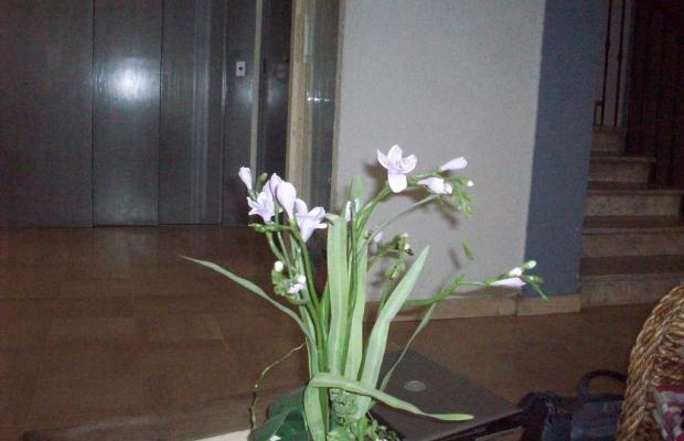 фото отеля Dante изображение №5