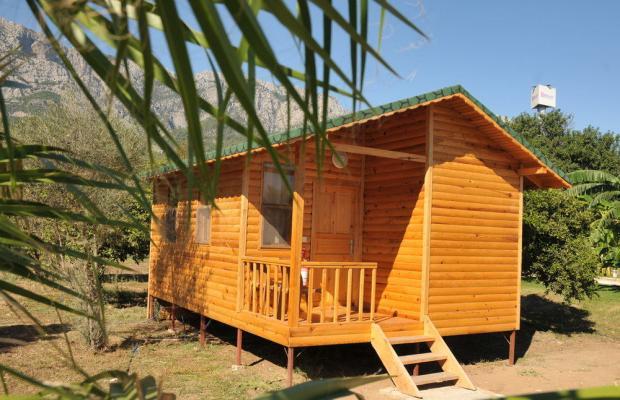 фото отеля Botanik Resort Hotel изображение №29
