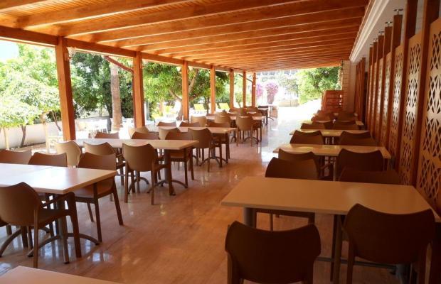 фотографии отеля Felice Hotel изображение №11