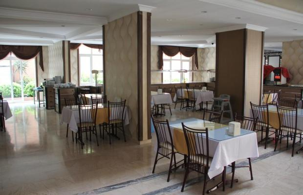 фото Club Dorado Hotel (ex. Ares) изображение №22