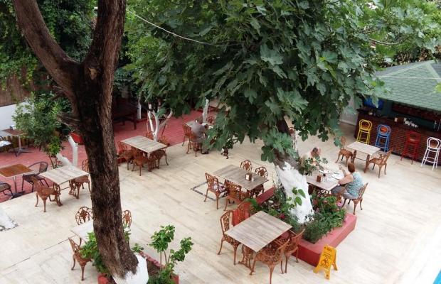 фото Kaliptus Hotel  изображение №30