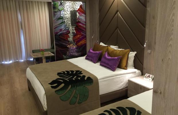 фотографии отеля Delphin BE Grand Resort (ex. Botanik Exclusive Resort Lara, Rixos Lares) изображение №3