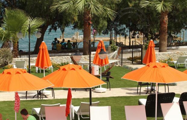 фотографии Orcey Hotel изображение №8