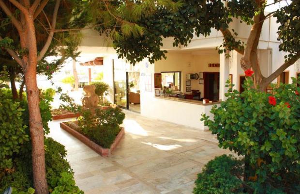 фото отеля Fiorita Beach Hotel (ex. Alta Beach) изображение №5