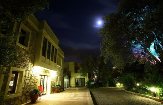 фотографии отеля Zeytinada изображение №19