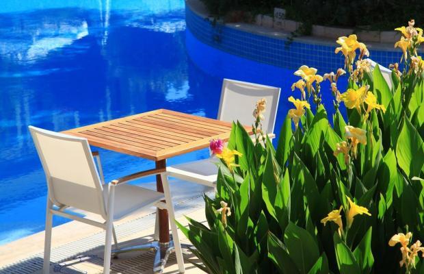 фотографии отеля Zeytinada изображение №3