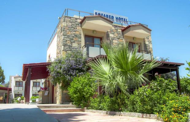 фотографии отеля Bodrum Sofabed Hotel изображение №23