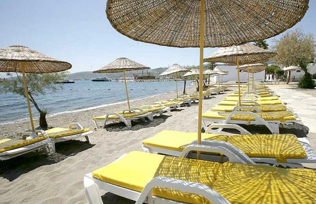 фотографии отеля Bodrum Sofabed Hotel изображение №7