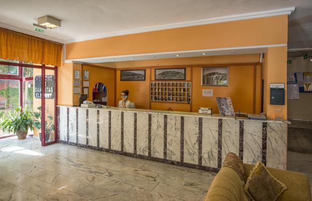 фотографии отеля  Damlatas Elegant изображение №11