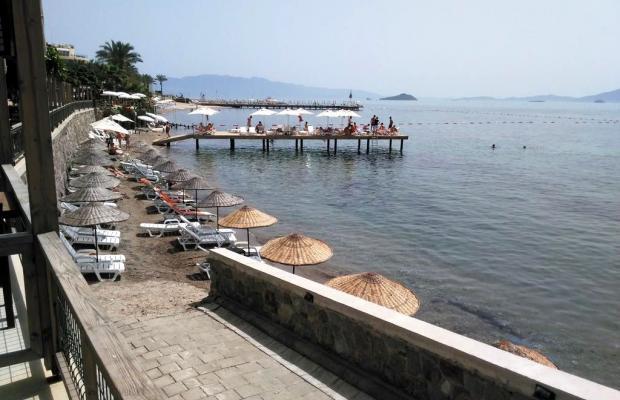 фотографии отеля North Cemre Boutique Hotel & Beach изображение №27