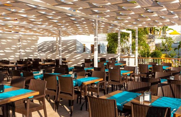 фотографии отеля Riva Bodrum Resort (ex. Art Bodrum Hotel & Club) изображение №31