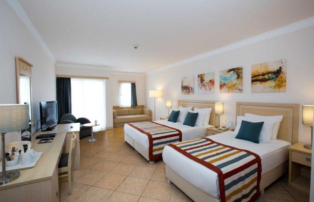 фотографии Paloma Grida Resort & SPA (ex. Grida Villagе) изображение №24