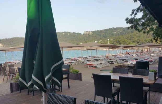 фотографии отеля Meder Resort изображение №11