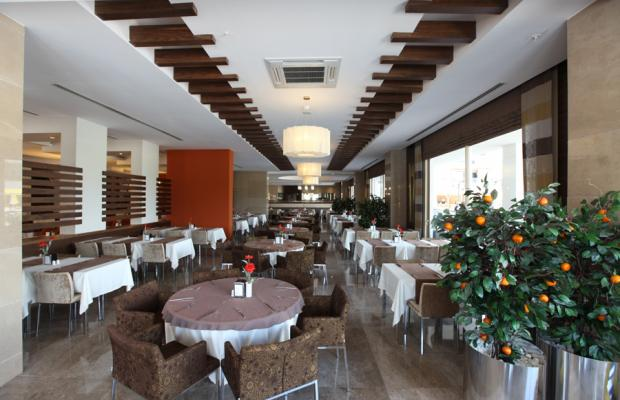 фотографии отеля Seher Sun Palace Resort And Spa изображение №11