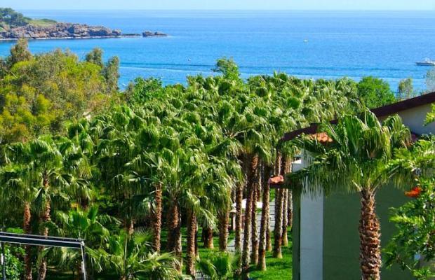 фотографии Gardenia Beach изображение №24