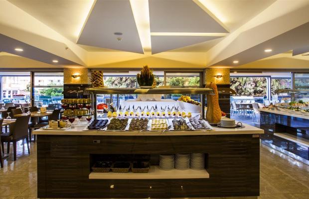 фотографии отеля Avena Resort & SPA (ex. Gold Safran) изображение №43