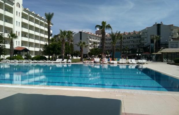 фотографии отеля Pineta Club Hotel изображение №11