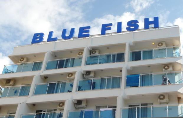 фотографии Blue Fish изображение №20